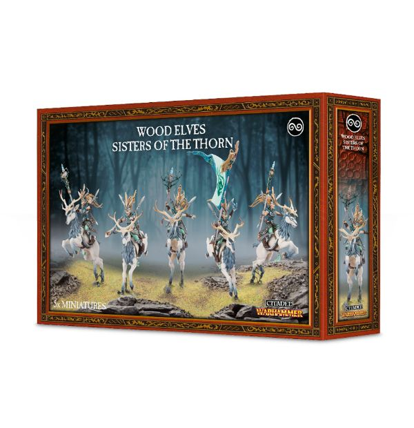 Sisters Of The Thorn Wood Elves Painting